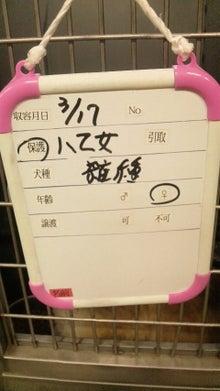 福のボンボン日記-2011031813100000.jpg