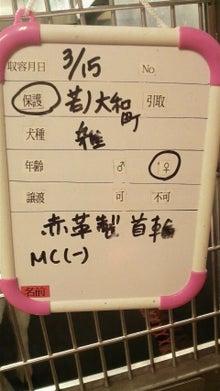 福のボンボン日記-2011031815270001.jpg