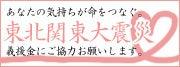 蒼 色 日 記-東北関東大震災義援金
