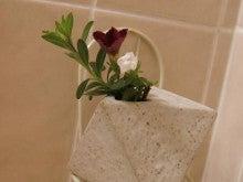 ヒロアミーの日記-お風呂の花