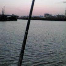 中島川釣行・やらかし…