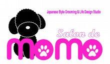 $Salon de MOMO