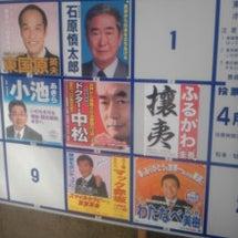 選挙告知される