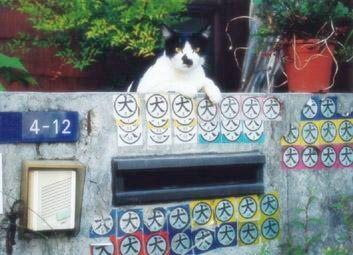 笑える.com-絶対にネコなのに、犬に見えてくる写真。