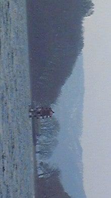 Michael Satsuki(美華慧龍 皐月)のブログ-DVC00070.jpg
