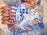 syunaさんのブログ-SH3E05860001.jpg