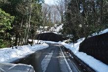 白神山地ツアーで能代山本地区の活性化すっぺ-2011年十二湖オープン3