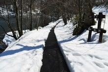 白神山地ツアーで能代山本地区の活性化すっぺ-2011年十二湖オープン5