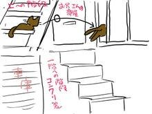 暴挙ぉ酒場2号店-あんなところから出入りする猫