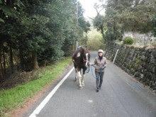 馬を愛する男のブログ Ebosikogen Horse Park-仲良く歩く菊正
