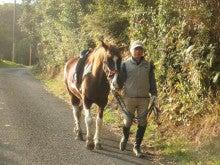 馬を愛する男のブログ Ebosikogen Horse Park-山道を落ち着いて歩く菊正