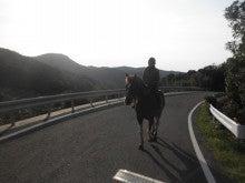 馬を愛する男のブログ Ebosikogen Horse Park-騎乗しての馬運