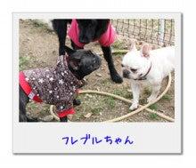 ☆yui☆のブログ