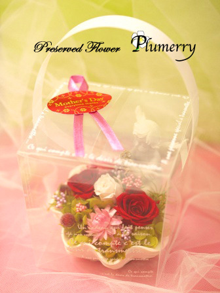 Plumerry(プルメリー)プリザーブドフラワースクール (千葉・浦安校)-天使 エンジェル 母の日