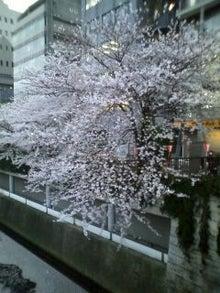 ★ラーメン占い blog★-110409_1745~01.jpg