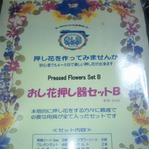 初!! 押し花