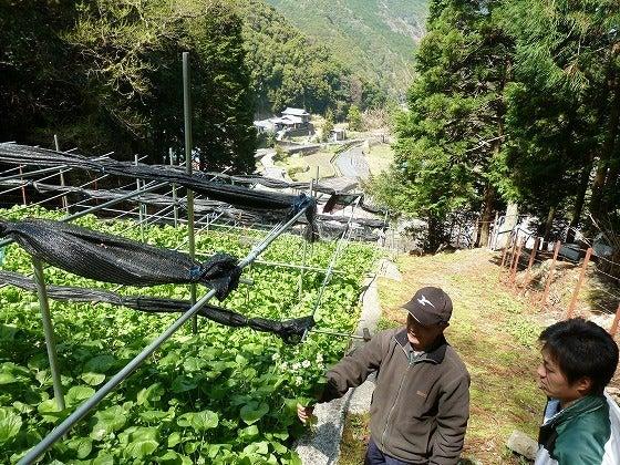 世界一の醤油をつくりたい 湯浅醤油有限会社 社長 新古敏朗のブログ-平井親子