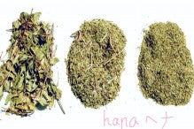 日本初!純国産 へナ hana henna 日記