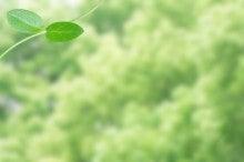 幸せな就職・『働く』を楽しもう~白血病克服のキャリアコンサルタント木村典子-双葉