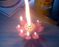 大連(中国)のWebデザイン会社で働く社長のブログ-中国の誕生日グッズのろうそく花開く