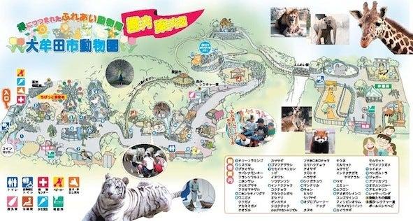 「大牟田市動物園」の検索結果 - Yahoo!検索(画像)