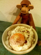 怒れる小さな茶色い犬-110414a
