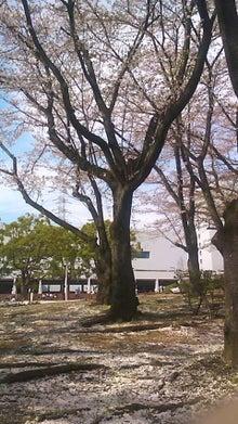 ぶろぐチップス(o^-')b♪-110415_1425~01.jpg
