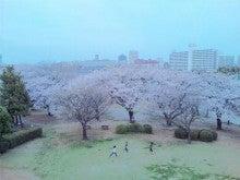 かおかお日記-110410_175619_ed.jpg