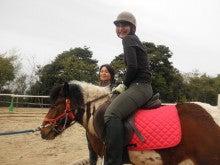 馬を愛する男のブログ Ebosikogen Horse Park-二人目のお客様