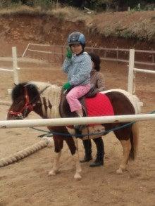 馬を愛する男のブログ Ebosikogen Horse Park-初めての小さなお客様