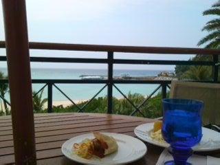 迷える魔術師 ~from Okinawa to World~(225先物・FX)