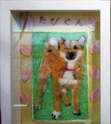 柴犬 「たび」のブログ