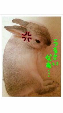 ☆tink lolita☆-2011041912350000.jpg