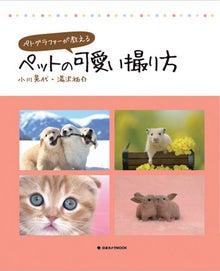 $Animal Lagoonブログ