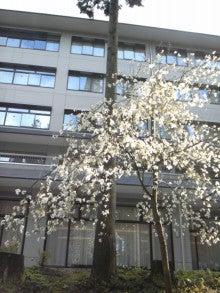 浄土真宗親鸞会         広島のつどい-110424_070232.jpg
