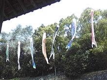 $松尾祐孝の音楽塾&作曲塾~音楽家・作曲家を夢見る貴方へ~-屋島の能舞台の鯉のぼり