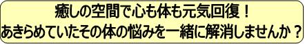 日野市豊田の整体・アロマ【たづな整体院】