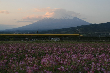 卍もーりぃ公式ブログ☆富士山にKISS卍-4