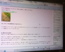 ツル的☆写真ブログ