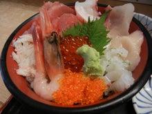 $新宿 寿司居酒屋 のだぴん ~魚と心の居酒屋さん~-ちらし