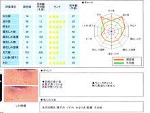 Strawberry Cream Days-肌診断