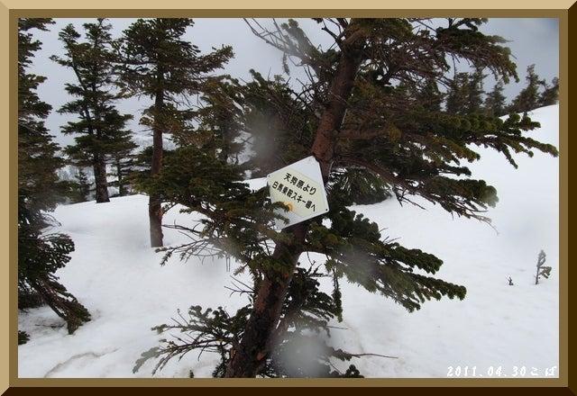 ロフトで綴る山と山スキー-0430_1003