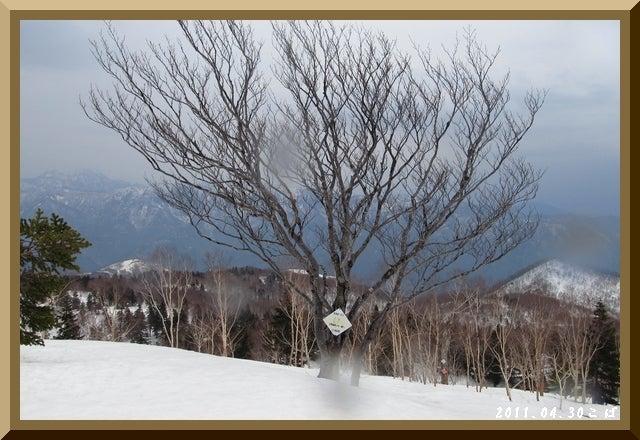 ロフトで綴る山と山スキー-0430_1044