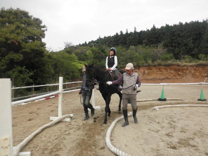 馬を愛する男のブログ Ebosikogen Horse Park-4年生だけど