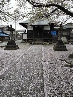 晴れのち曇り時々Ameブロ-神社と桜