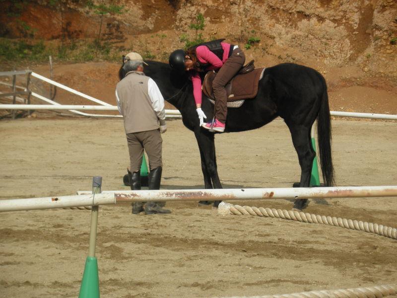 馬を愛する男のブログ Ebosikogen Horse Park-馬上体操