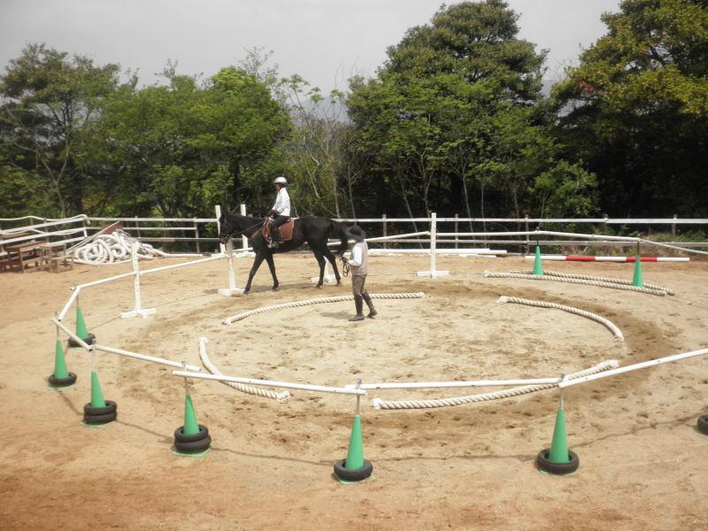 馬を愛する男のブログ Ebosikogen Horse Park-レッスン生
