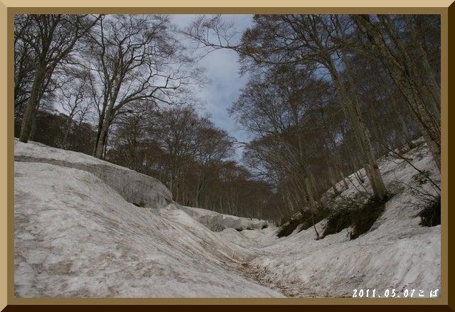 ロフトで綴る山と山スキー-0507_0849