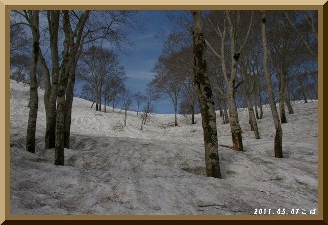ロフトで綴る山と山スキー-0507_0918