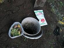 家庭菜園の野菜作り、上達のコツと菜園ライフの楽しみ方